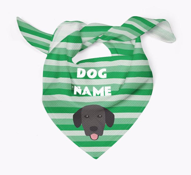 Personalised 'Stripes' Bandana for your Springador